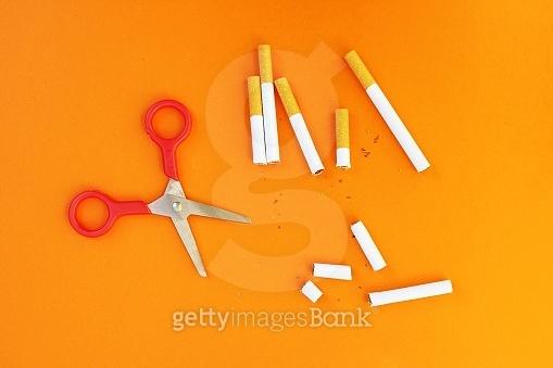 나란히 금연!