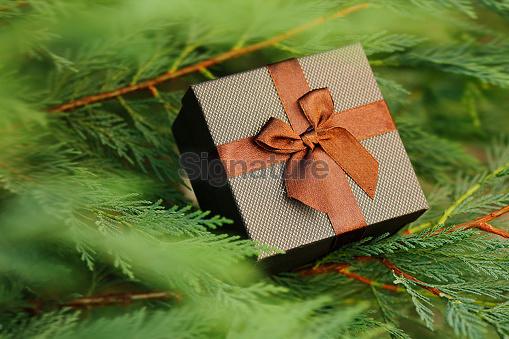 Christmas holiday gift box