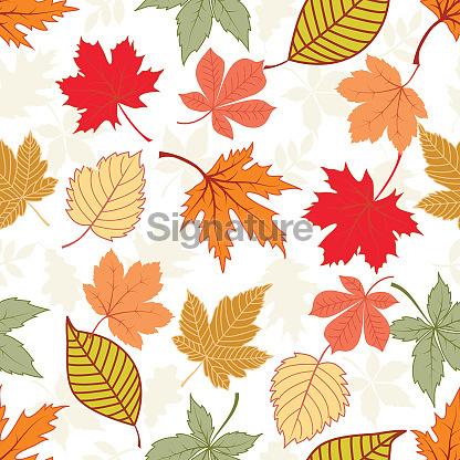 낙엽 일러스트