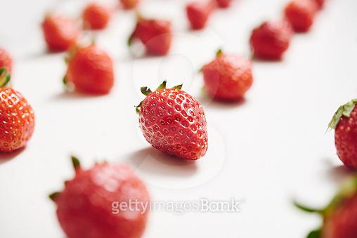 딸기 파티