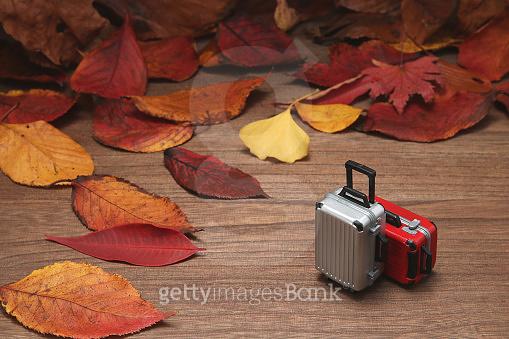 책상위에 가을
