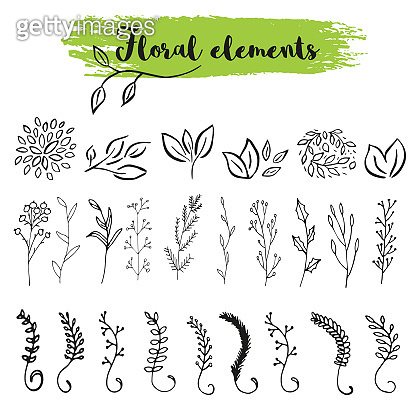 Vector floral with leaves, branches, plant elements