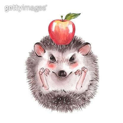 수채화 동물 캐릭터