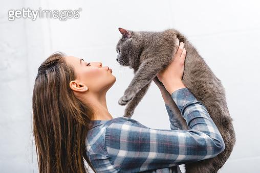 고양이와 함께 하는 휴일