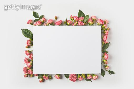 flower frame & background