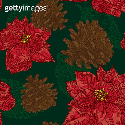 vintage looking poinsettia holiday pattern
