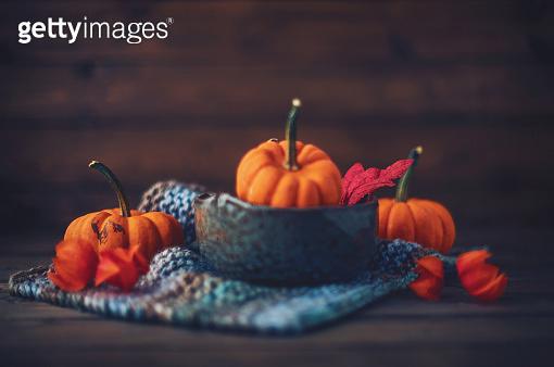 Pumpkin, Thanksgiving