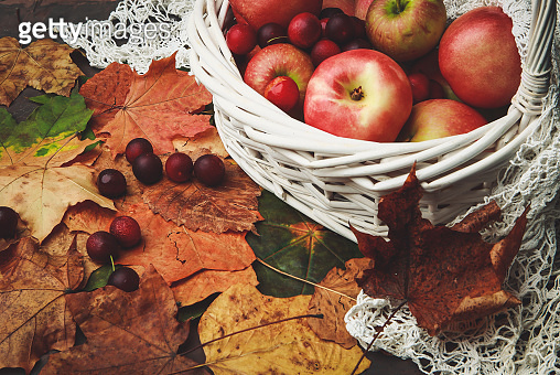 Fruits on autumn leaves