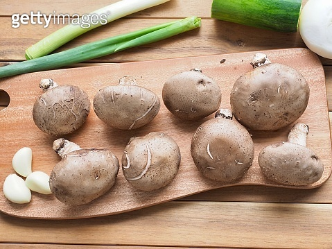 몸에좋은 버섯