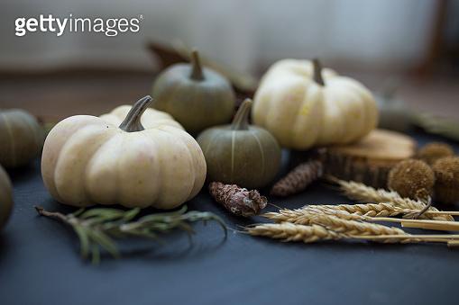 Autumn still life with pumpkins