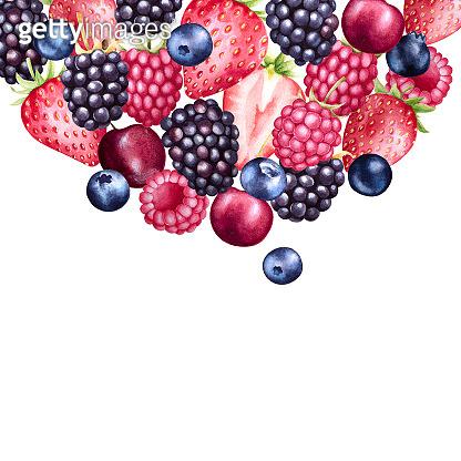 Hand drawn illustration of fruits
