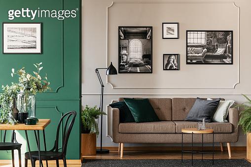 Green design of elegant room interior