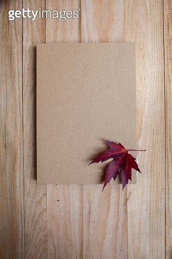Autumn leaf of paper