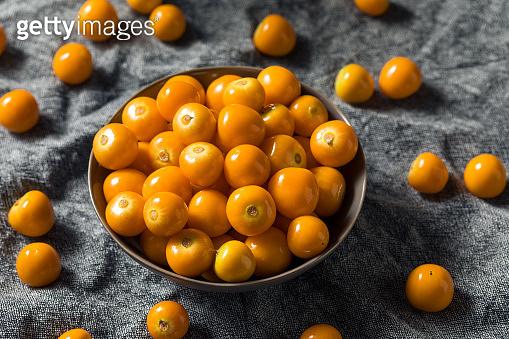 Raw Orange Organic Gooseberrries