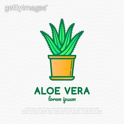 illustration of home plant