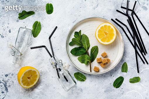 Fresh branch of mint