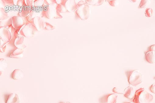 봄 꽃잎 백그라운드