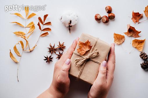 낙엽 백그라운드
