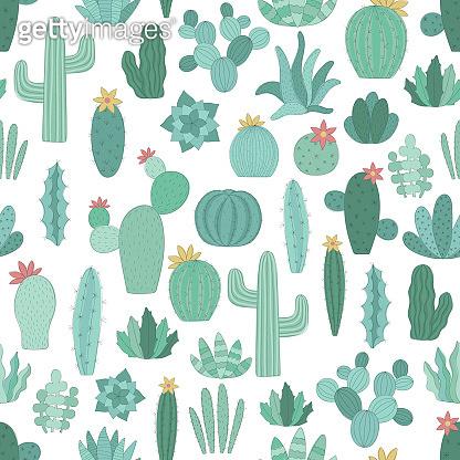 Seamless pattern of cactus