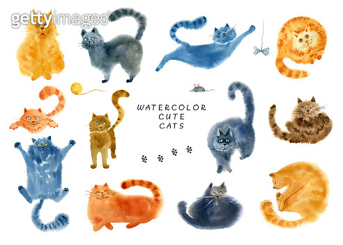 Hand drawn watercolor cat
