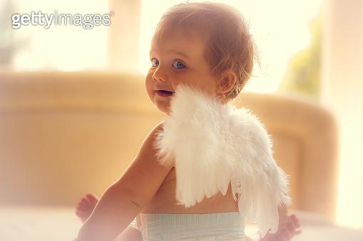 나의 천사