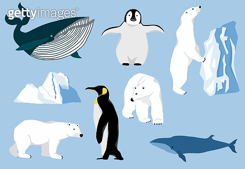 Simple arctic animal
