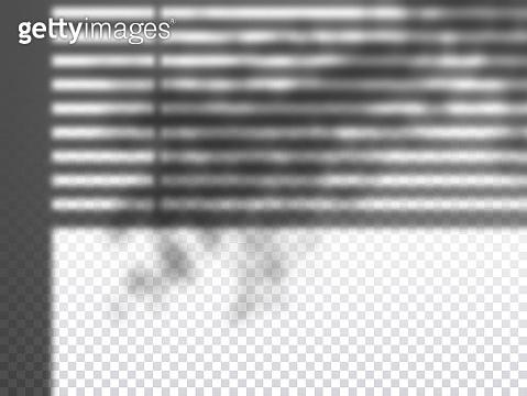 Vector shadow