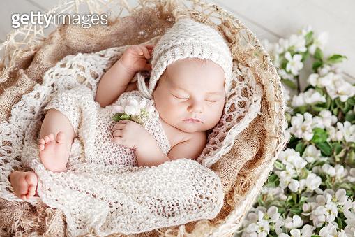 Baby sleeps in a basket