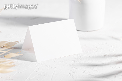 Mockup template with dry plants