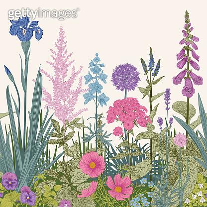 Garden flowers illustration