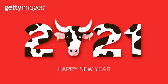 2021 New Year&Christmas