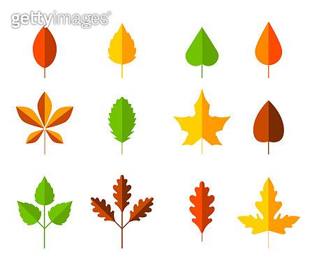 가을 낙엽 아이콘
