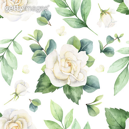 Watercolor white roses