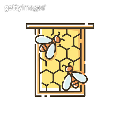 꿀벌 아이콘