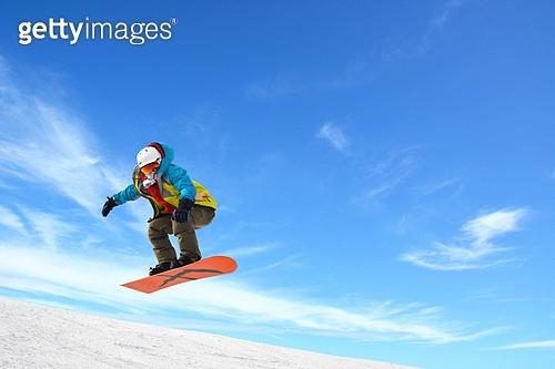 겨울을 날다
