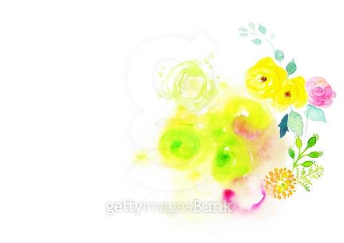 꽃의 향연, 수채화 백그라운드