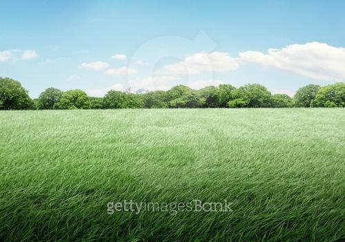 자연 풍경