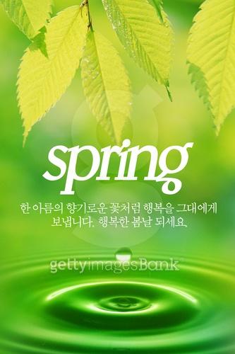 봄 모바일템플릿