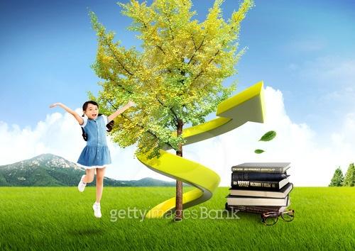 나무와 라이프스타일
