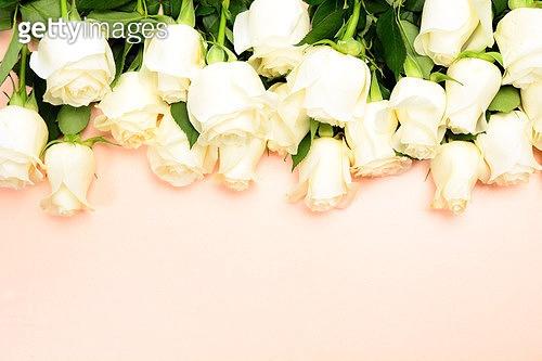 꽃과 여백