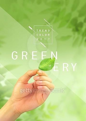 Greenery in life