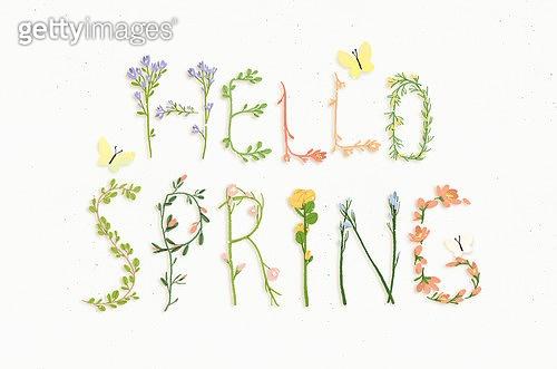 봄을 기다려