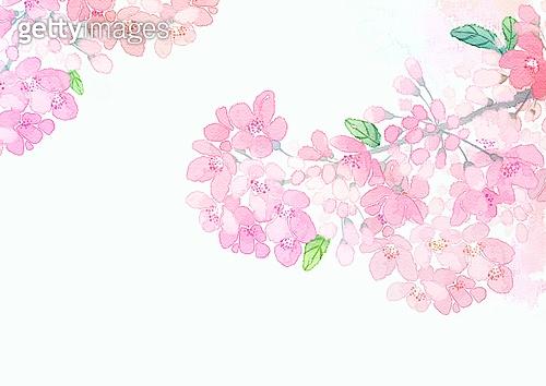 꽃피는 봄이 오면