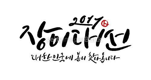 2017, 장미대선
