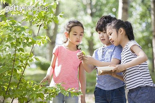 여름방학 자연학습