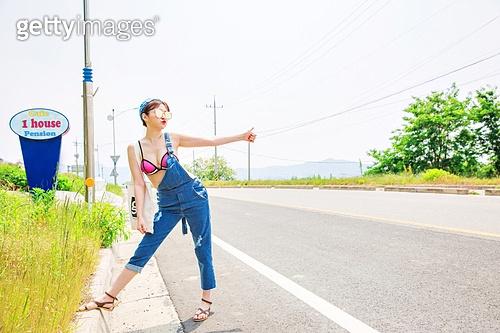 Summer Traveller