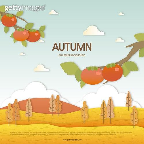 가을 페이퍼 백그라운드