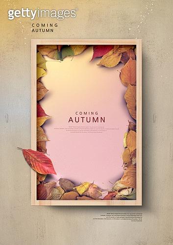 Coming autumn