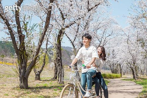 #자전거#벚꽃#데이트