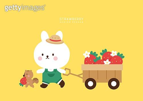 딸기가 좋아!